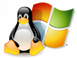 Работа операционных систем linux и windows 7 на одном компьютере