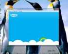 Как ввести логин в скайпе, если он не вводится?